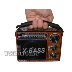 """Переносной радиоприемник WAXIBA XB 201URT c mp3 """"Природа"""""""