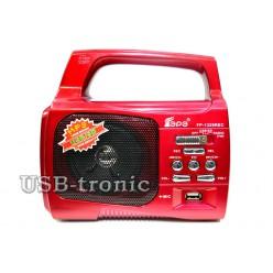 Переносной радиоприемник для дачи с фонарем. Красный.