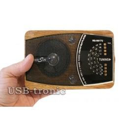 Радиоприемник с mp3 RredSun RS-9818 - Природа
