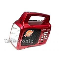 Переносной радиоприемник EPE FP-1329 для дачи с фонарем (красный)